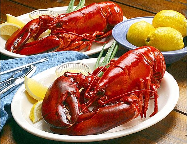 Ce mai mâncăm?  Crustacee