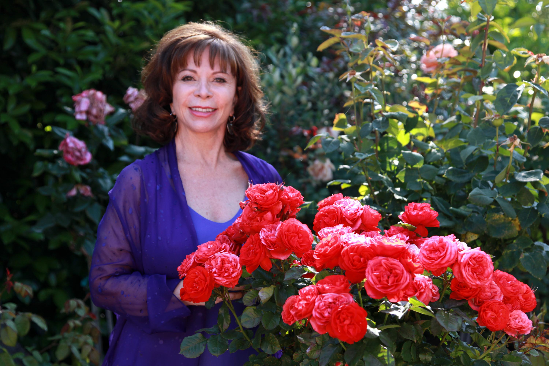 Isabel Allende. Dictatura chiliană şi exilul sufletesc