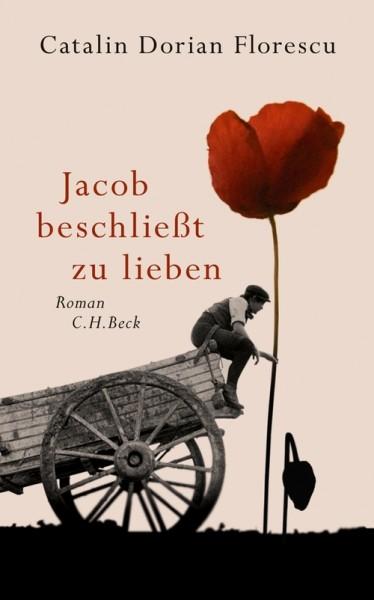 """Cartea anului 2011 în Elveţia, """"Jacob se hotărăşte să iubească"""", vîndută în 47.000 de exemplare"""