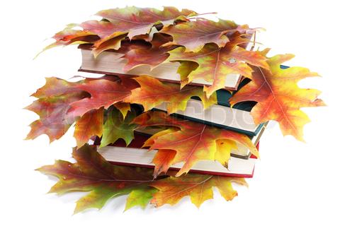 Noutățile toamnei (1)  Ce cărți să căutați în librării