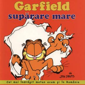 Garfield, supărare mare